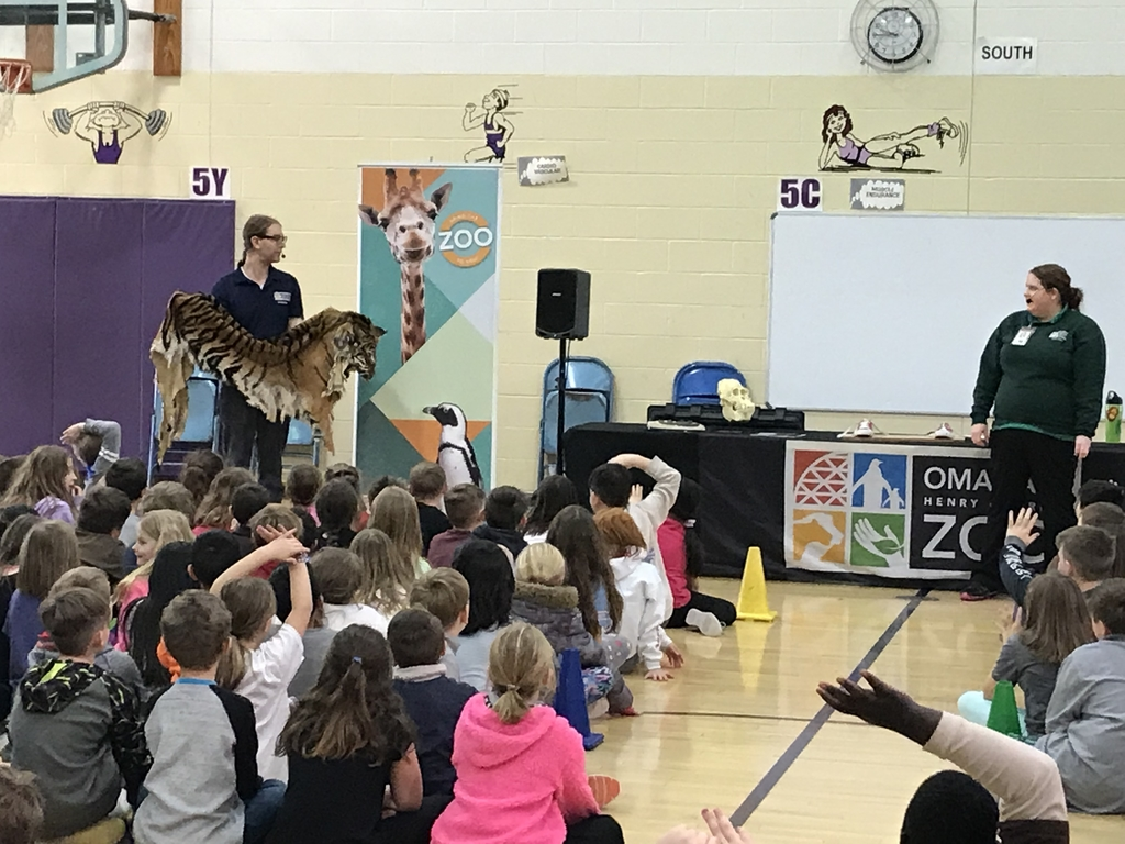 Zoo Assembly